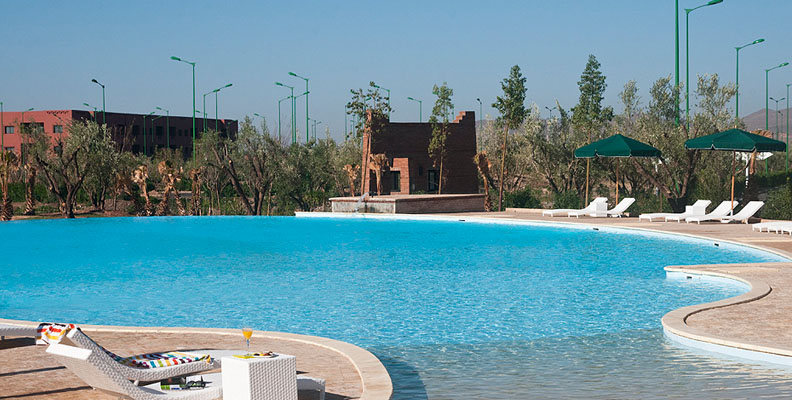 Der Olivengarten - Marrakesch